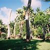018 - Papua Nieu Guinea 2-11 Jan 1998
