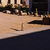 009 - 007 - Namibia 1-10 Oct 1998