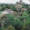 016 - 1999-05 Belize & Tikal Guatemala