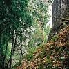 007 - 1999-05 Belize & Tikal Guatemala