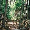 008 - 1999-05 Belize & Tikal Guatemala