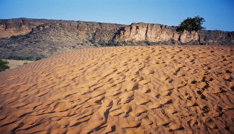 390 - West Africa 13 Mar-10 Apr 2000