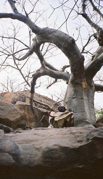 273 - West Africa 13 Mar-10 Apr 2000