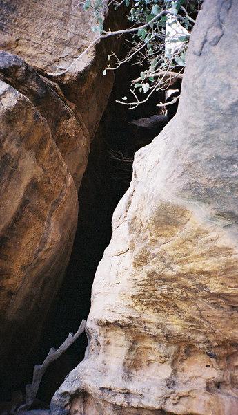 348 - West Africa 13 Mar-10 Apr 2000