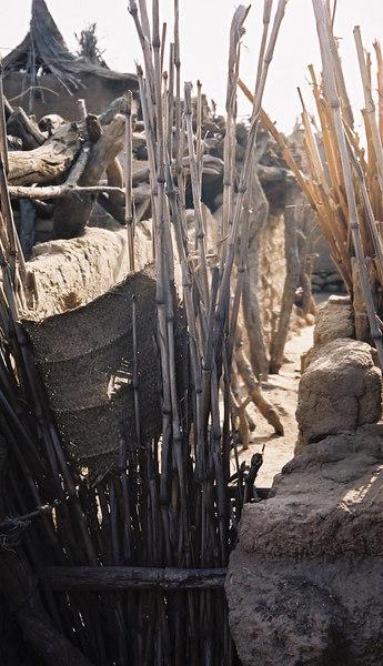 260 - West Africa 13 Mar-10 Apr 2000