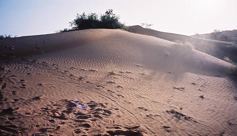 388 - West Africa 13 Mar-10 Apr 2000