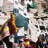 411 - West Africa 13 Mar-10 Apr 2000