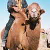 156 - 175 - Mongolia 28 Aug-9 Sep 2000 - Mongolia 28 Aug-9 Sep 2000