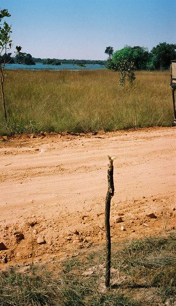012 - Zambia 18-24 Jun 2001