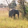 039 - Zambia 18-24 Jun 2001