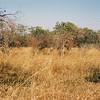 043 - Zambia 18-24 Jun 2001