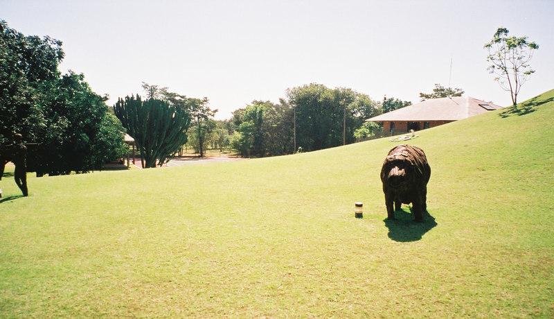 007 - Zambia 18-24 Jun 2001