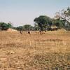 055 - Zambia 18-24 Jun 2001