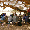 154 - <br /> Day 5 - <br /> Lunch stop under an acacia tree <br /> (Page 11-Image 7)