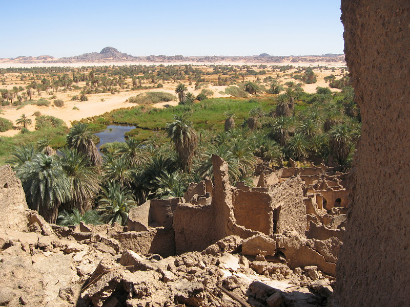 060 - <br /> Day 3 - <br /> The lush green of the Djado oasis  <br /> (Page 4-Image 15)