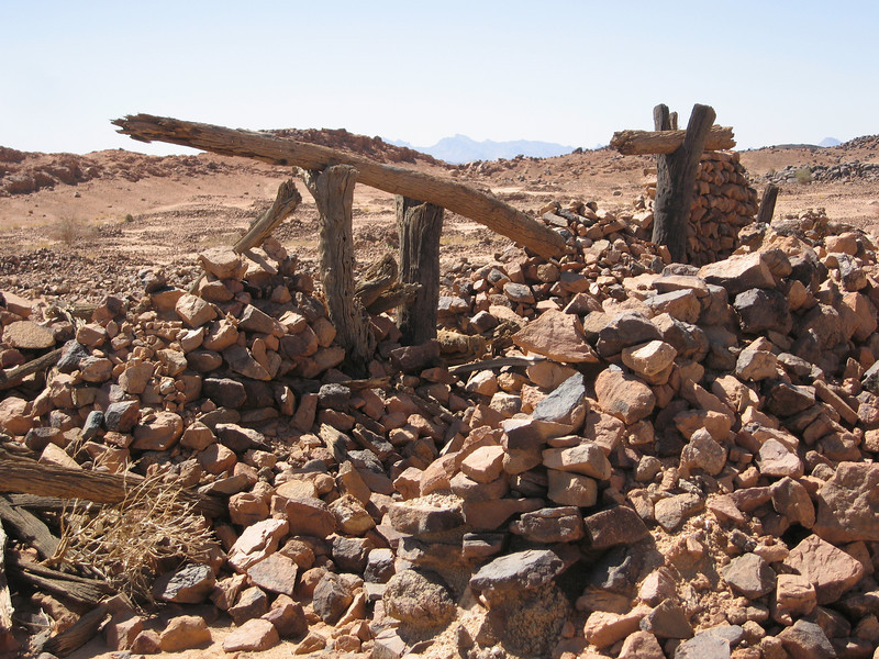 351 - <br /> Day 10 - <br /> Timber almost petrified from desert exposure <br /> (Page 24-Image 6)