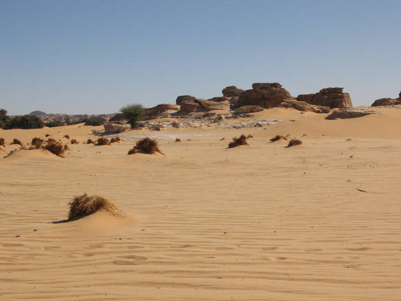 040 - <br /> Day 3 - <br /> The next morning, we cross the desert to the oasis of Djado <br /> (Page 3-Image 10)