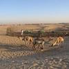 026 - 2006-05 (May) - Dubai