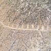 0441 - 2007-07-11-12 - Azerbaijan (Gobustan)