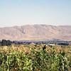 021 - 2007-08 (Aug) 09-11 - Tajikistan (Hissar Fortress)
