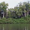 323 - 2007-11 Angola
