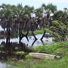 028 - 08 - 2007-11 Pointe Noire jpg