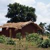 026 -458 - 2007-11 Malawi