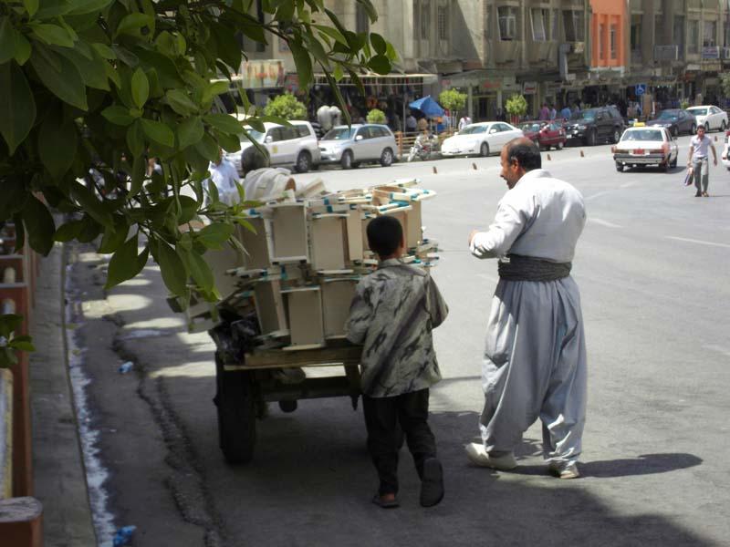 058 - 2008-08-17-19 - Iraq Erbil