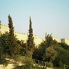 002 - 2008-08-27-28 - Israel