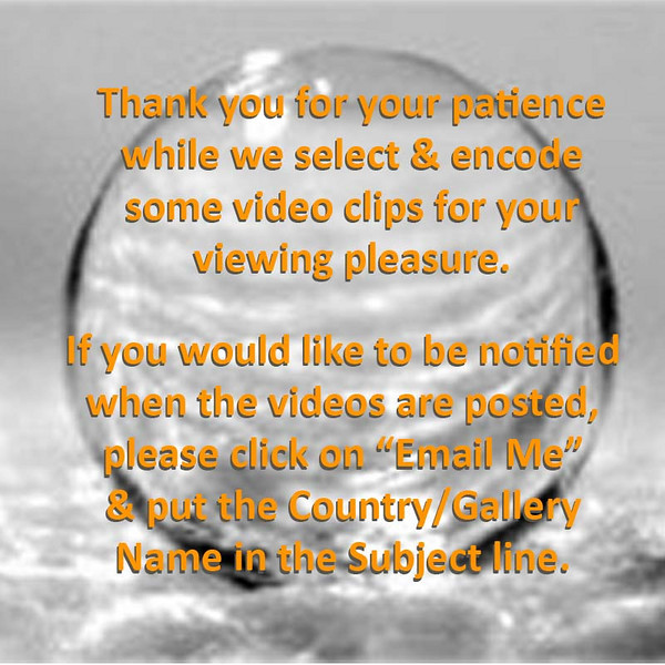 Video Gallery Notice 01