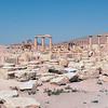 320 - 2008-08-24-26 - Syria