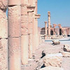 316 - 2008-08-24-26 - Syria