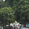 009 - 2008-09-23-25 - Cape Verde