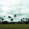 005 - 2008-09-20-21 Liberia