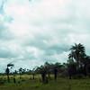 006 - 2008-09-20-21 Liberia