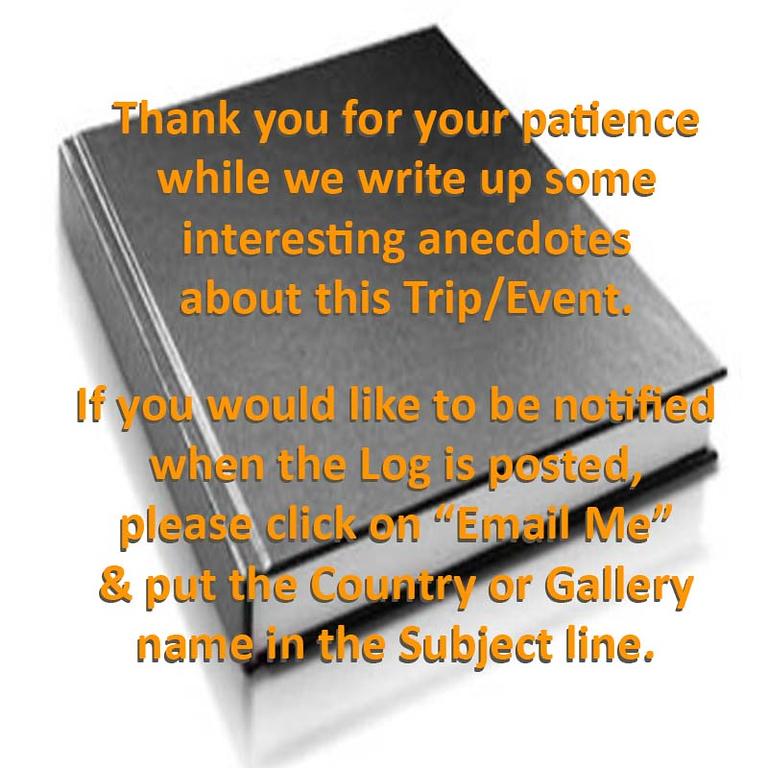 Log Gallery Notice 01