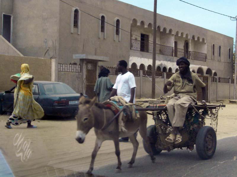 020 - 2008-09-25-26 - Mauritania Nouakchott
