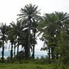 003 - 2008-09-22 - Sierra Leone