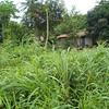 017 - 2008-09-22 - Sierra Leone