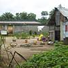 020 - 2008-09-22 - Sierra Leone