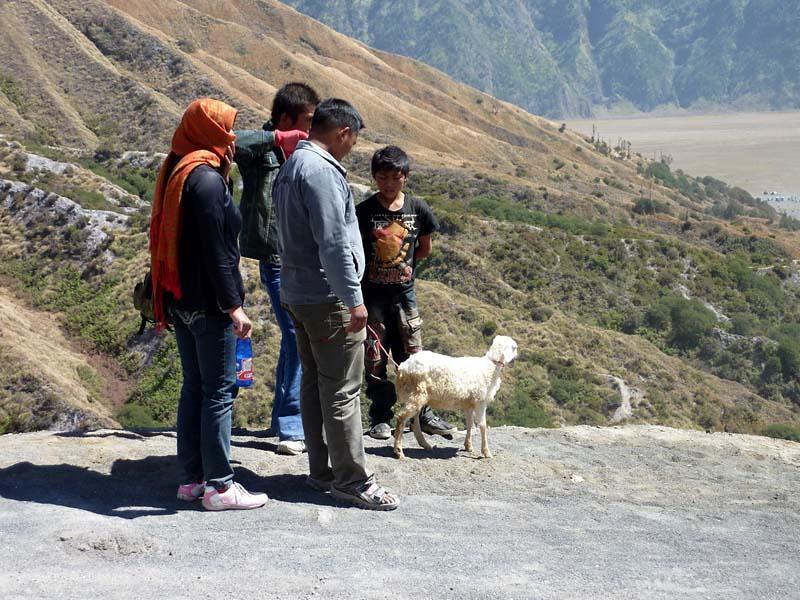 280 - 2009-09 - Indonesia (East Java)