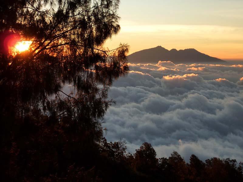351 - 2009-09 - Indonesia (East Java)