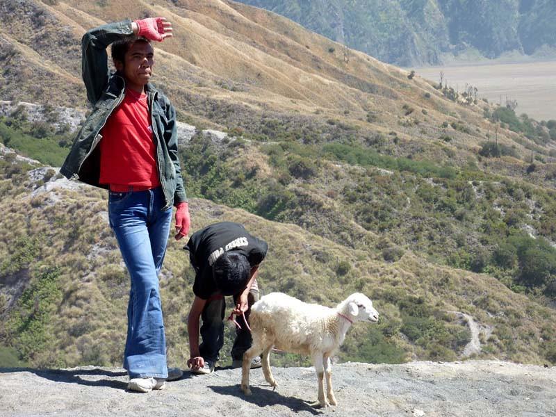 278 - 2009-09 - Indonesia (East Java)