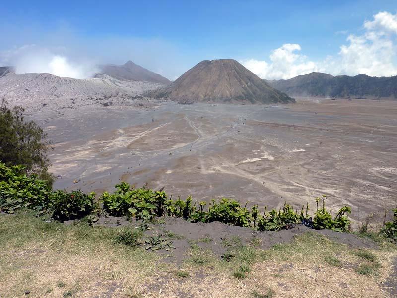 491 - 2009-09 - Indonesia (East Java)