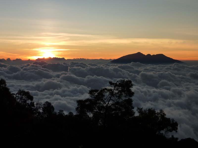 355 - 2009-09 - Indonesia (East Java)