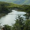 Streambed near Lapataia Bay, Tierra del Fuego, Patagonia, Argentina