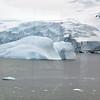 0565 - Neko Harbour - 2011-02-20 - P1060093