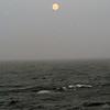 0124 - At Sea (Drake Passage) - 2011-02-18 - P1010573