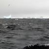 1476 - Penola Strait-Booth Island - 2011-02-22 - P1010813