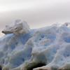 1051 - Crystal Sound - 2011-02-21 - P1060694